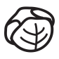 cabagge Icon